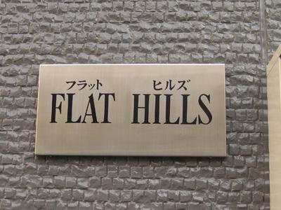 FLAT HILLS